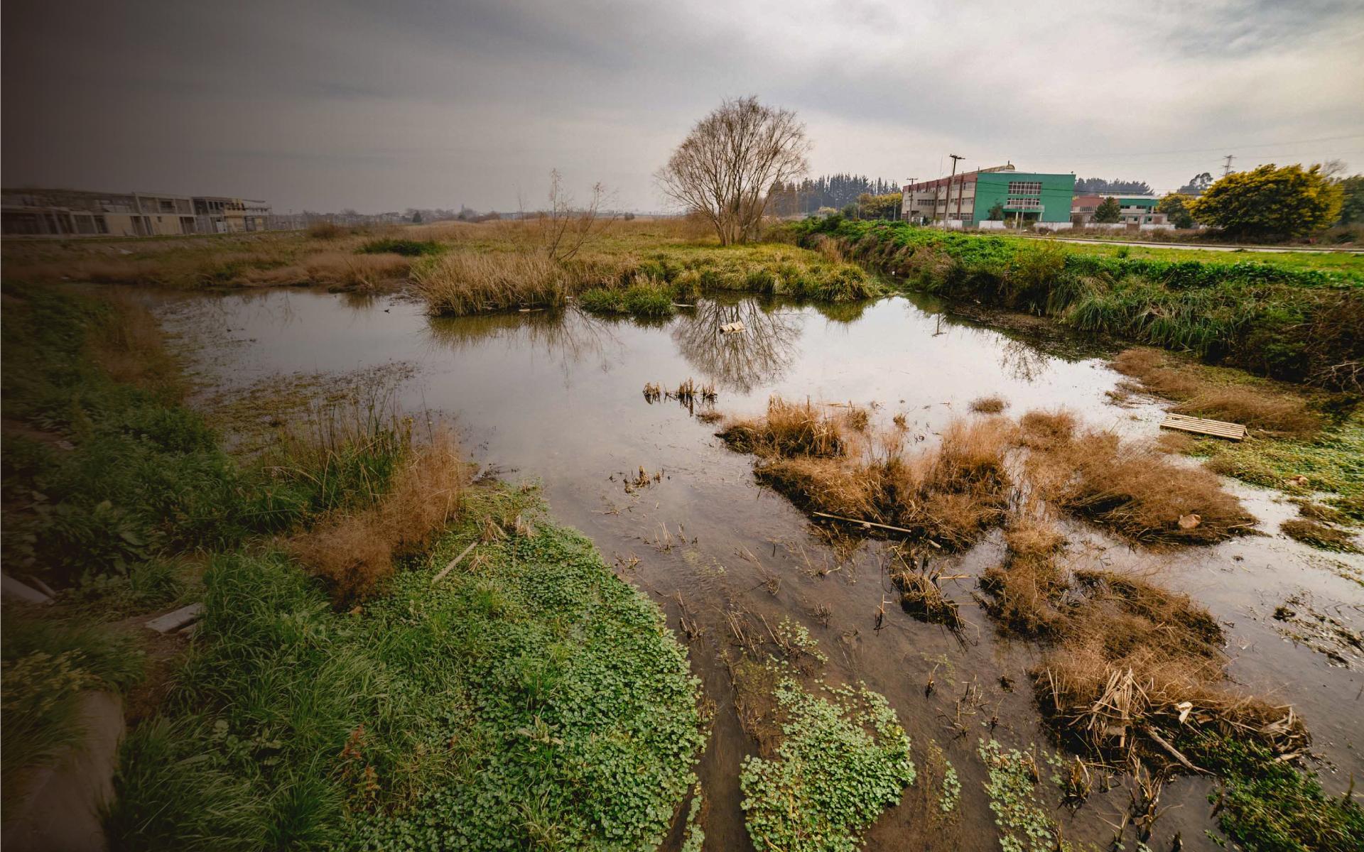 Cuidamos los humedales urbanos,</br>pero ensuciamos el agua que reciben